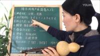 七孔降B调葫芦丝教学视频第一课《简易入门》