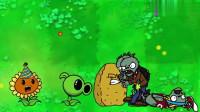 植物大战僵尸:僵尸挖地洞偷袭向日葵植物
