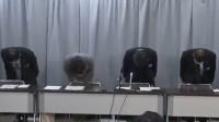 负责人鞠躬致歉!日本24人被误判新冠肺炎 1人住院与患者共处