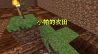 我的世界地牢联机14:小帕开了一块农田,才发现自己的种子不够
