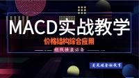 MACD价格结构综合应用【如何判断进出仓买卖信号】期货外汇解盘
