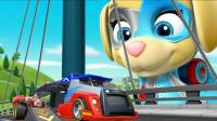 超奇怪!汪汪队的赛车比赛怎么暂停了?地上为何会出现油污呢?儿童玩具故事亲子益智游戏