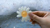 钩针花朵:掉了一个花瓣的小雏菊,简单教程,新手可学