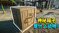 【游戏真好玩】动物园之星02:我收到一个神秘箱子,好奇里面会是什么动物?