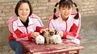 欢欢的有趣童年短剧:兔宝宝6:欢欢让小奶狗帮忙看兔宝宝,有新伙伴玩真开心!
