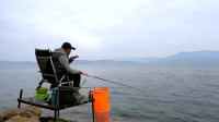 李大毛钓的这个鱼不简单,看着像小麦穗,其实3千多一公斤!