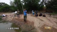 扬竿瞬间的声音遛鱼过程的刺激这就是钓鱼人想要的
