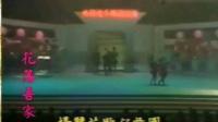 杨丽花歌仔戏团抖音3