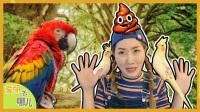 会说话的鸟 去见五颜六色的鹦鹉朋友们吧