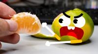 橘子和柠檬都会说话了,你见过吗?真是太搞笑了!
