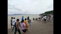 【全文军】深圳湾一日游