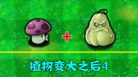 植物大战僵尸:变大后的小喷菇和窝瓜,你觉得谁更强?