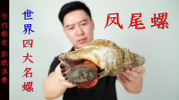 500买一个凤尾螺,世界4大名螺之首,出锅后一半翻车,一半超好吃