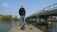 蓝旗鱼路亚 | 鱼藏桥墩边,测试软尾VIB能不能把鱼钓出来?
