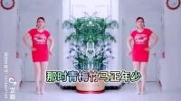 彩苒广场舞(拈花一笑)时尚好听的舞曲选段