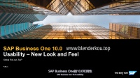 1.SAP Business One 10.0 新的界面外观 Usability - New Look and Feel SAP B1 SBO