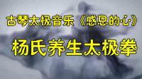 太极音乐《感恩的心》杨氏养生太极拳