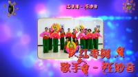 阳光美梅广场舞《红枣树》团队版古典形体舞