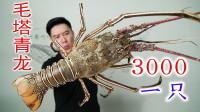 看这阵容,我立马花3000买一只超大毛塔青龙虾,把外甥女都吃嗨了