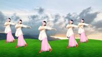 轻柔广场舞《荷塘月色》简单易跳的形体广场舞