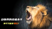 动物界杀手排行榜,狮子仅排第5,第一人人都见过!