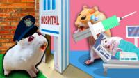 仓鼠冒充医生,被警察通缉踏进迷宫,它能成功逃脱吗?