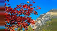 河南焦作云台山的美景,和家人一定要去的地方,你想不想在这样的美景中与最爱的人一起畅玩啊?