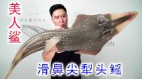 试吃一条16斤的美人鲨,非常罕见,出锅后却翻车了,中看不中用