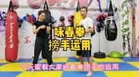 咏春拳教学之搒手的运用