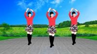 广场舞《小花》流行热曲欢快32步,美美的背面示范