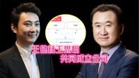 王健林王思聪共同成立公司,王思聪持股2%