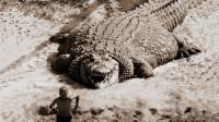 鳄鱼中的王者,体重11吨,身长13米,曾把恐龙当猎物!