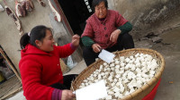 胖妹买10斤豆腐,花费15天做臭豆腐,配上蛋炒饭,那叫一个香