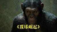 """比人类还""""聪明""""的猩猩(1)《猩球崛起》"""