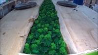 木头配合环氧树脂打造一张桌子,果然与众不同