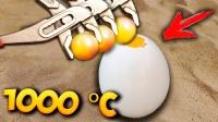 1000℃的铁球能烤熟鸵鸟蛋吗?老外现场测试,下一秒不敢相信