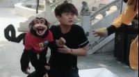 你敢欺负我的猴子猴孙