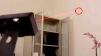 以色列发明灭蚊神器,激光制导能精准定位,一打一个准!