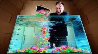 1000个泡水玩具能吸收多少水?老外亲测,结果有点意外!