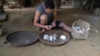 水稻哥 第122集  种植野生棉花
