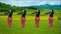 阿娜广场舞-草原上美丽的姑娘-正反面加分解