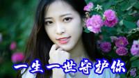 网络红歌《一生一世守护你》红蔷薇原唱最新情歌优美动听