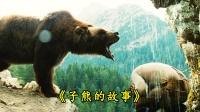 """豆瓣评分9.1真实故事改编,小熊失去妈妈,靠""""舔""""认个熊爸爸"""