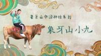 """《乡村爱情13》象牙山中国神话系列之""""象牙山小九"""""""