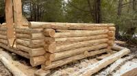 木屋建造 丛林工艺 建造一个实用经济的木屋 第5部分 单独建造墙