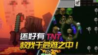 我的世界植物大战僵尸:还好有TNT救我于危难之中!