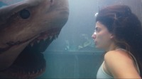 美女硬刚绝命食人鲨