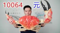 10064买一只巨大皇帝蟹,做巨无霸甲壳烧,吃一口满满的幸福感