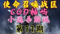【COD柚屿】使命召唤战区小逃杀解说第11期