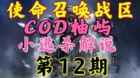 【COD柚屿】使命召唤战区小逃杀第12期
